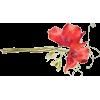 Flower art - Rascunhos -