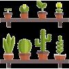 Flowerpots - Uncategorized -