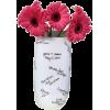 Flowers Pink - Plants -