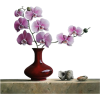 Flowers Plants Purple - Plants -