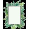 Flowers - Frames -