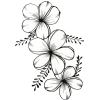 Flowers - Nature -