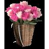 Flowers Plants Pink - Plants -