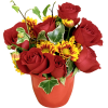 Flowers Plants Red - Plants -
