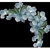 Forget Me Not Floral Corner - Uncategorized -