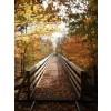 Fotkanje - My photos -