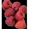 Fruit - 水果 -