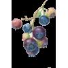 Fruit, blue berries - Plantas -