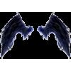 krila - Illustrations -