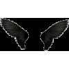 krila - Illustrazioni -