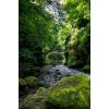 Gorges de la Jordanne in Auvergne France - Nature -
