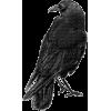Goth - Items -