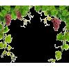 Grapes - Uncategorized -