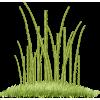 Grass - 植物 -