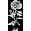 Gray Flower - Biljke -