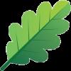 Green - Uncategorized -