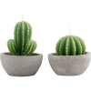 Grey. Green. Cactus. Candles - Mobília -