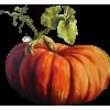 Halloween - Przedmioty -