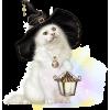 Halloween cat - Animals -