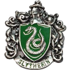 Harry Potter Slytherin Crest Pin - Other jewelry -