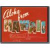 Hawaiian Post Cards - Articoli -