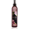 Hollister Co Laguna Beach Mist - Fragrances -