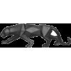 I love Pumas - Items -