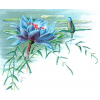 Plants Blue - Fundos -