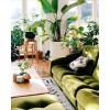 Interior Design - Catwalk -