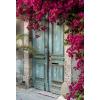 FAVORITES - Background -
