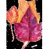 Leaf - Piante -