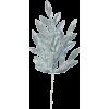 Leaf - Pflanzen -