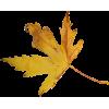 Leaf - Priroda -