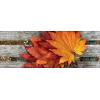 Leaves - Tła -