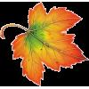 Leaves - Natura -