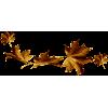 Leaves - Piante -