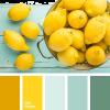 Lemons - Fondo -