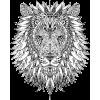 Lion illustration - Illustrations -