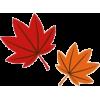 Maples - Uncategorized -
