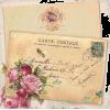 Card - Illustrations -