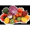 voće - Illustrations -