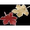 Leaf - Biljke -