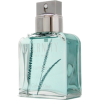 Perfume - Fragrances -