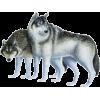 Wolf - Animales -