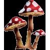 Mushroom - Plants -