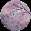 Moon - Предметы -