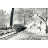NEW YORK CITY winter photo - Uncategorized -
