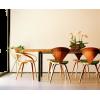 NORMAN CHERNER dining set photo - Uncategorized -