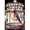 Birdcage - イラスト -
