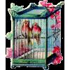 Birdcage - Items -
